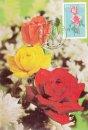 Indian Roses - Mrinalini