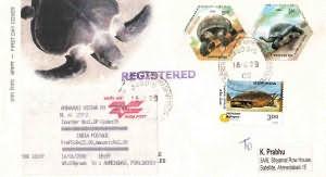 Aldabra Giant Tortoise Pre-Issue Cover - Design-2