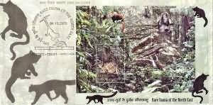 Rare Fauna of North East India