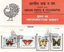Indian Butterflies